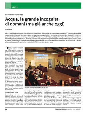 Focus Editoriale