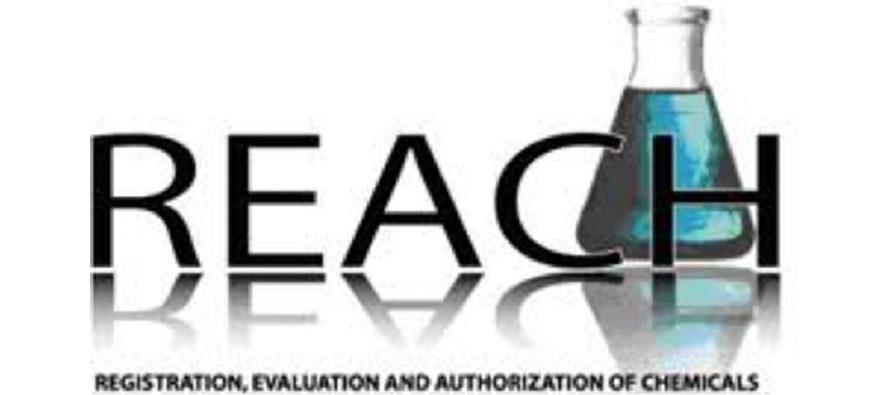 Regolamento 1907/2006/CE (REACH): obblighi e doveri per fabbricanti e importatori
