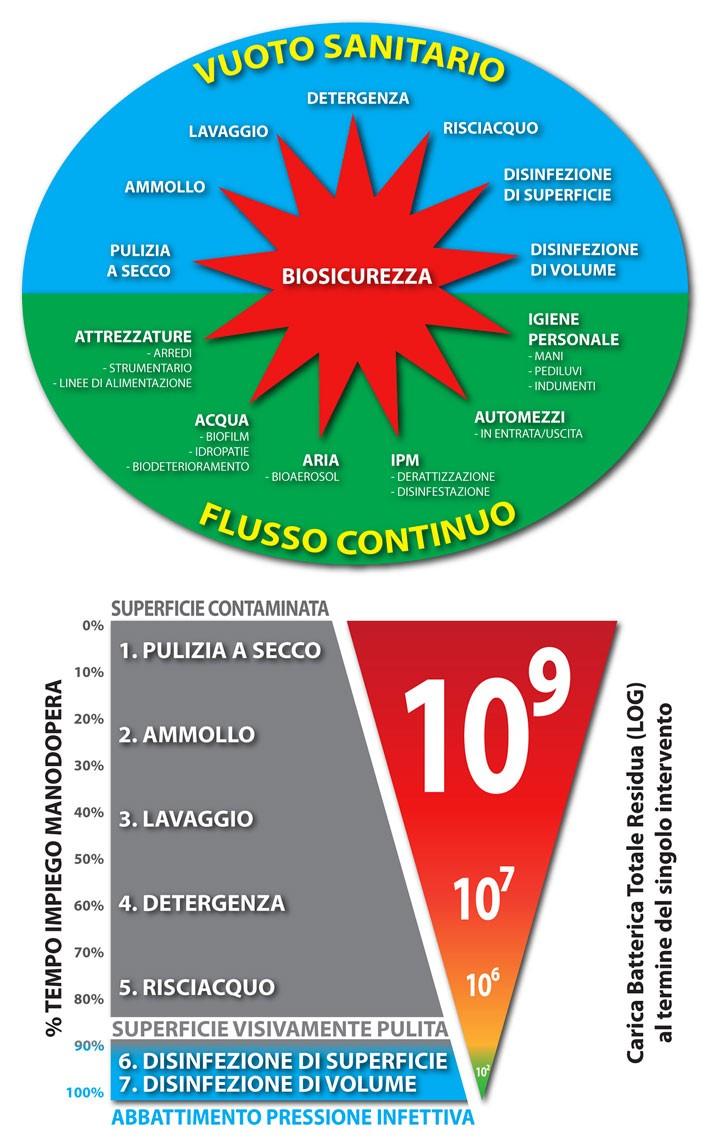 Infografiche Fare Igiene