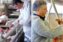 """Easychlor Compresse Effervescenti: bioceutico per l'igiene dell'impianto idrico a """"misura di prescrizione veterinaria"""""""