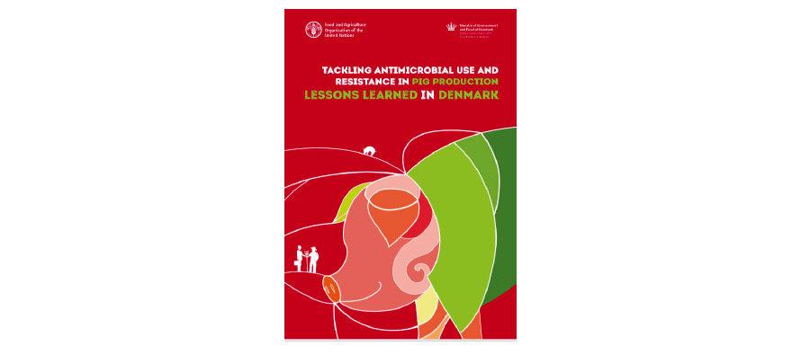 """Contrasto all'Antibioticoresistenza: FAO batte la strada del """"mutuo apprendimento"""""""