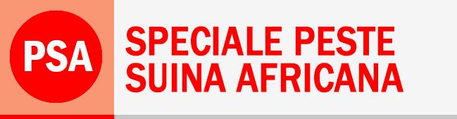Rubrica Speciale Peste Suina Africana
